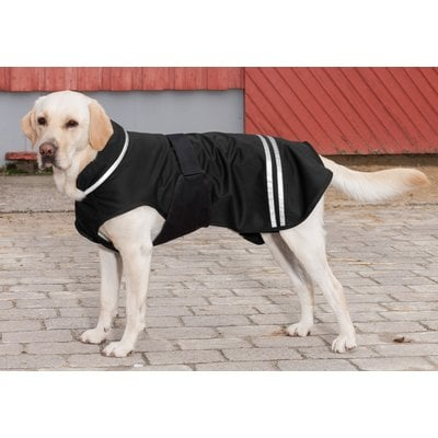 Softshell Hundemantel Nero