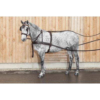 Zweispänner-Brustblattgeschirr, für Ponys bis 135 cm