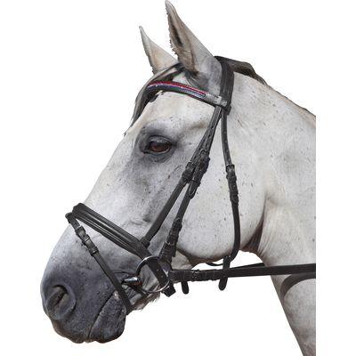 Cavallo Trensenzaum Hamburg