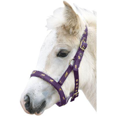 Loesdau Fohlen-Nylonhalfter, mit Pferdemotiv lila | Fohlen