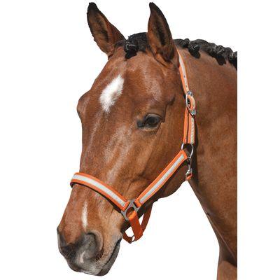 Horse-friends Halfter Reflex Stripe