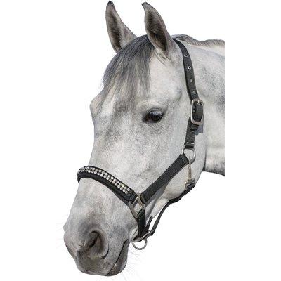Halfter Antique Style schwarz/silber | Pony