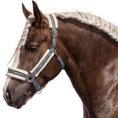 Halfter Horses