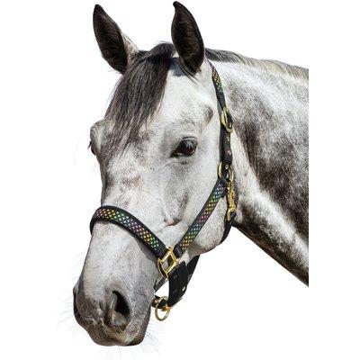 Horse-friends Halfter Las Vegas schwarz | Warmblut
