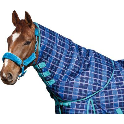 Horse-friends Halsteil Aspen