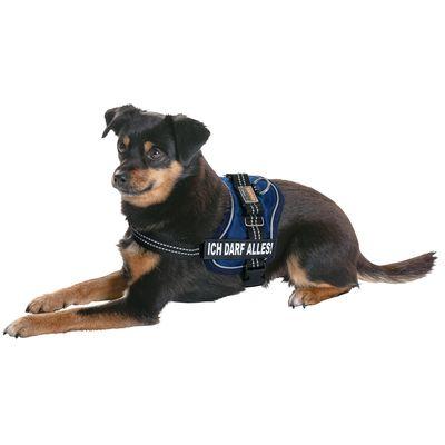 EQuest4DOGS Hundegeschirr EQuest-DOX Premium Standard