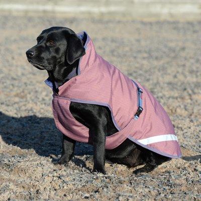 bucas Hundemantel Dog Rug Freedom 50 g ginger   30 cm