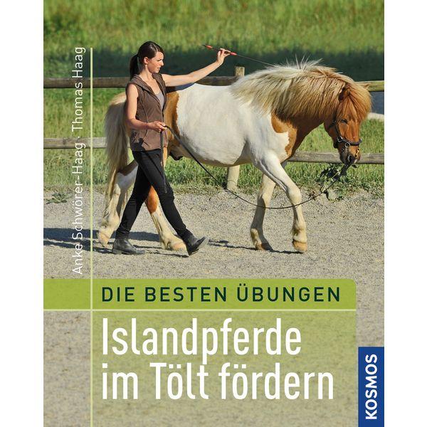 Islandpferde im Tölt fördern