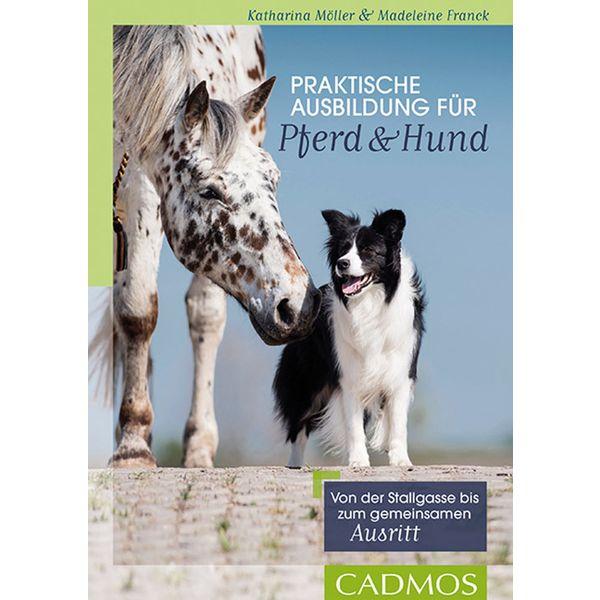 Praktische Ausbildung für Pferd & Hund