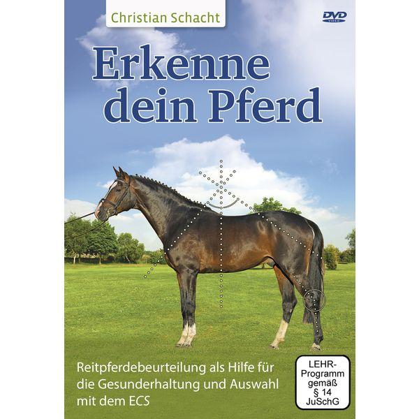Erkenne dein Pferd, DVD