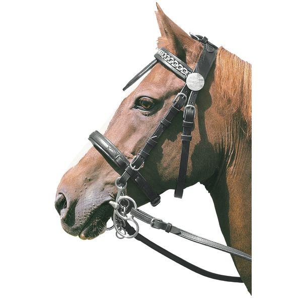 Kopfgestell ohne Scheuklappen schwarz | Pony