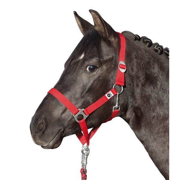Loesdau Halfter Supergünstig rot | Pony