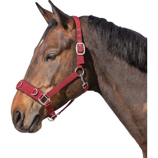 Horse-friends Longier- und Stallhalfter bordeaux | Vollblut