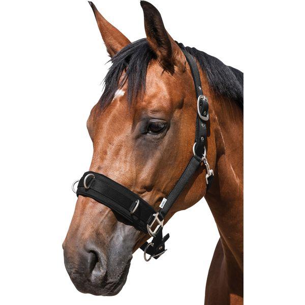 Horse-friends Longier- und Stallhalfter schwarz | Vollblut