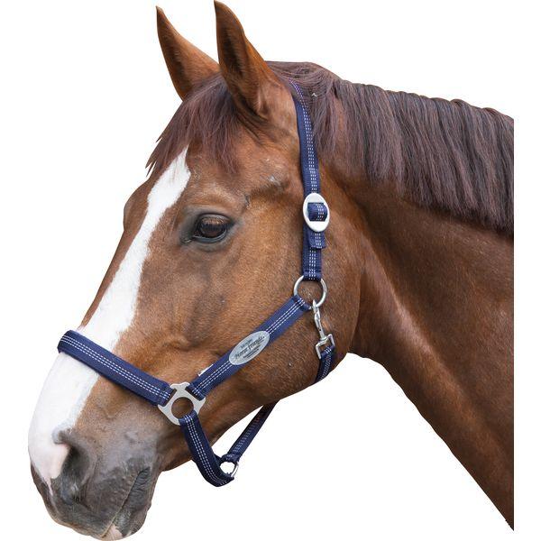 Horse-friends Halfter Paris
