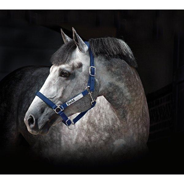 Horseware Halfter Fieldsafe navy | Pony