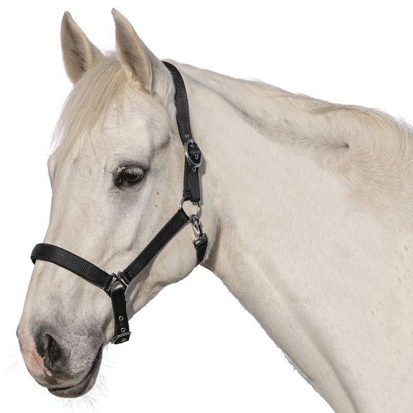 Horse-friends Halfter Padova