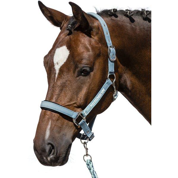 Horse-friends Halfter starlight   Warmblut