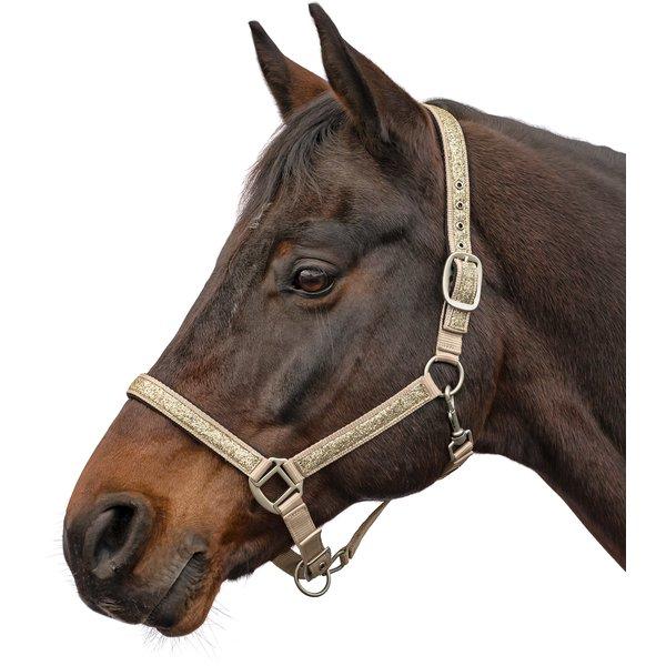 Horse-friends Halfter Ancona champagner | Warmblut