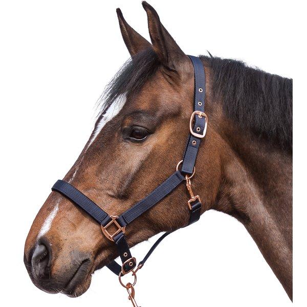 Horse-friends Halfter Lima navy | Pony