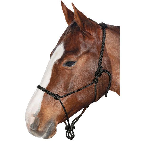 BROCKAMP Knotenhalfter Horse-Man-Halfter schwarz | Warmblut