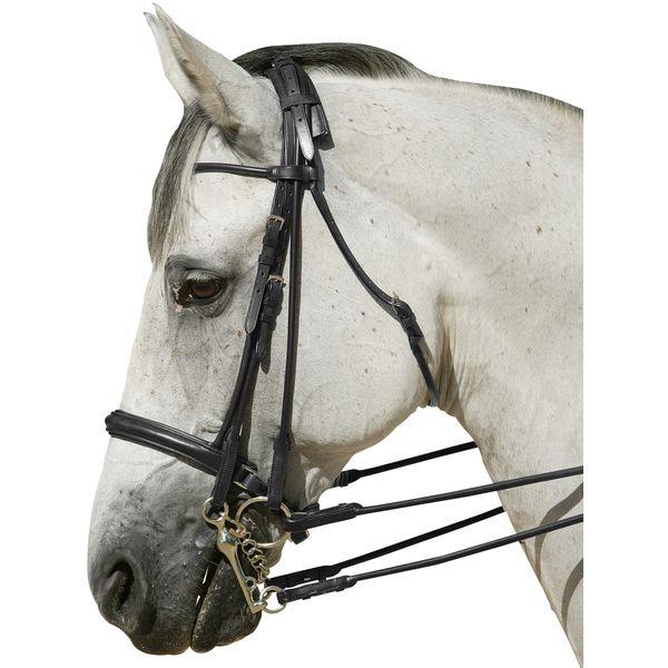 Kandarenzaum Breuniger schwarz | Pony