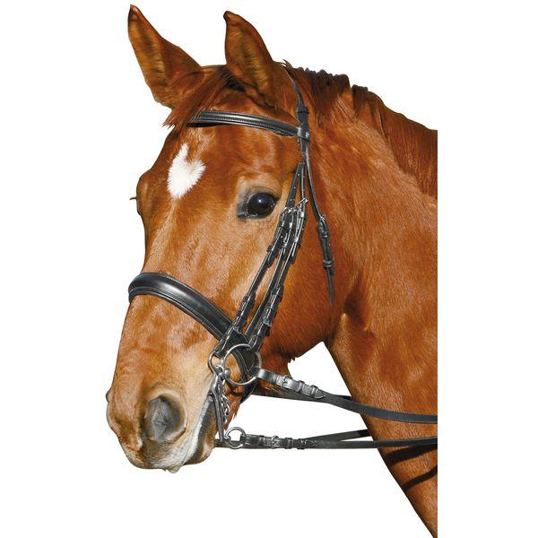 DÖBERT Kandarenzaum schwarz | Pony