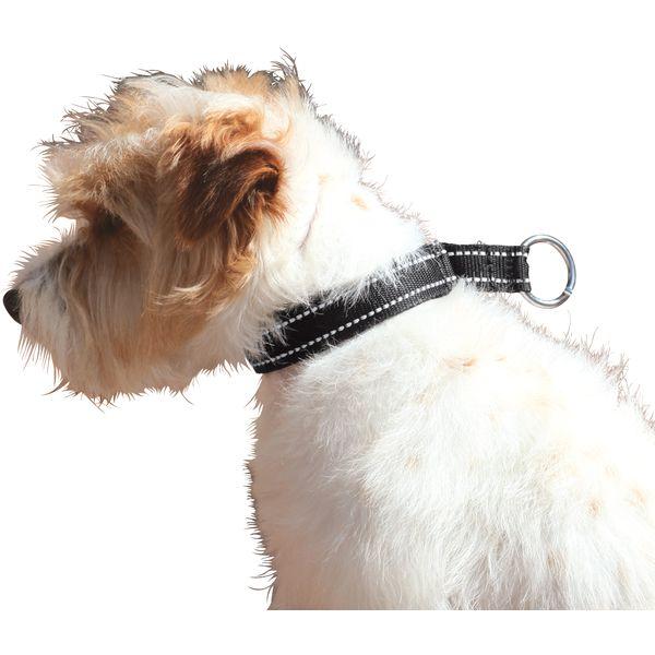 Hundehalsband Lucky