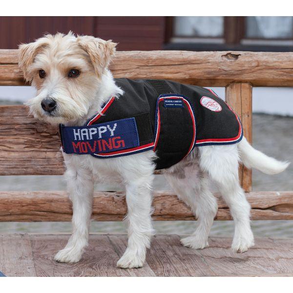 happy moving Hundemantel