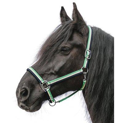 Horse-friends Kaltbluthalfter Caracas