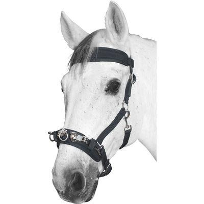 Kappzaum für Ponys